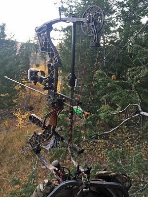 Tree Stand Bow Hanger